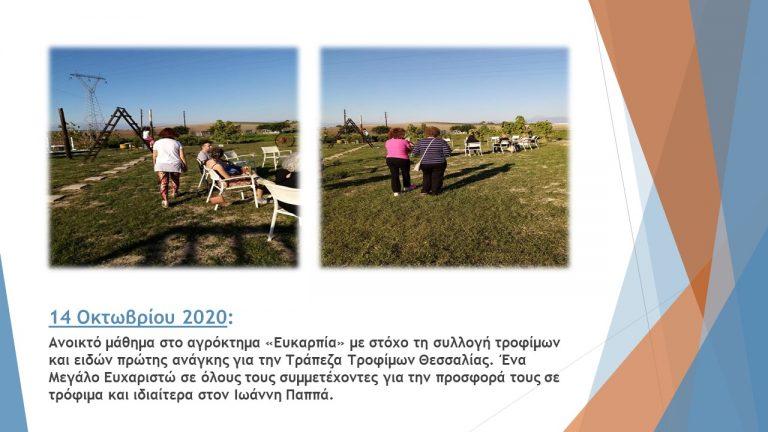 ΤΤ Θεσσαλίας β 6μηνο 2020 (15)