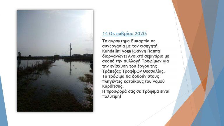 ΤΤ Θεσσαλίας β 6μηνο 2020 (16)