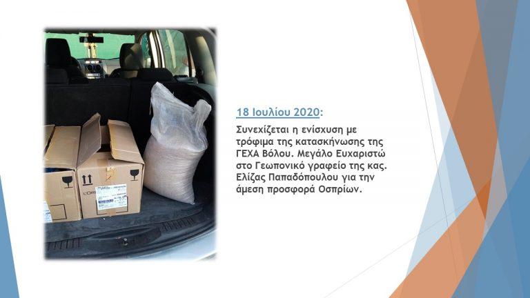 ΤΤ Θεσσαλίας β 6μηνο 2020 (4)
