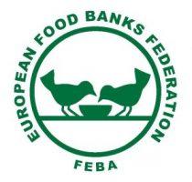 Logo_EFBF-FEBA_large-300x286